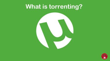 Torrenting คืออะไร คู่มือฉบับเต็มเพื่อทำความเข้าใจการแชร์ไฟล์