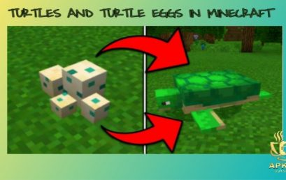 How to hatch Turtle eggs in Minecraft
